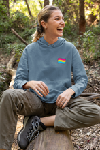 Load image into Gallery viewer, Unisex Pansexual Flag Hoodie