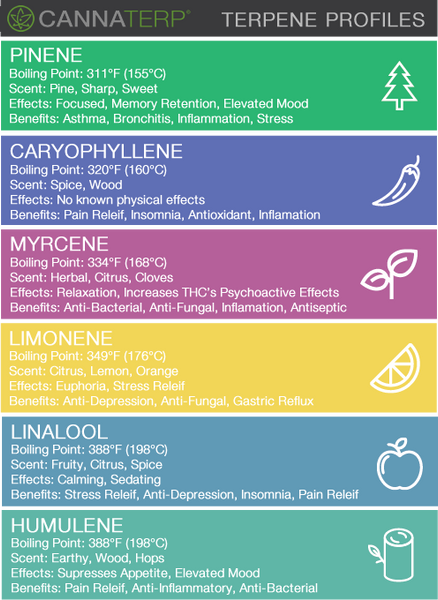 Canada Terpene Isolates Reference Infographic