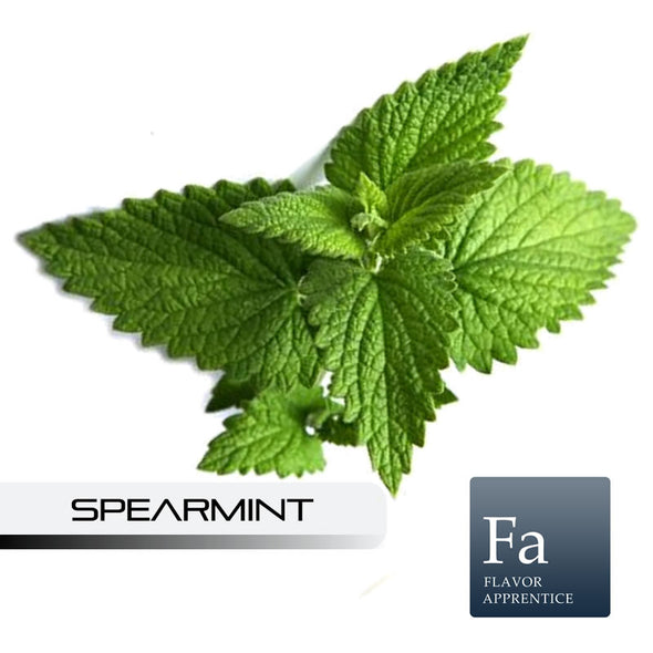 Spearmint Flavour by Flavor Apprentice