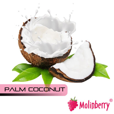 Palm Coconut by Molinberry