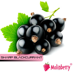 Sharp Blackcurrant by Molinberry