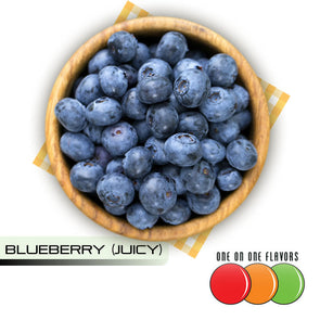 Blueberry (Juicy) Flavour by One On One