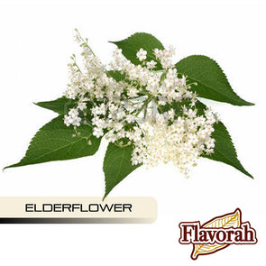 Elderflower by Flavorah