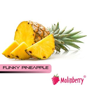 Funky Pineapple by Molinberry