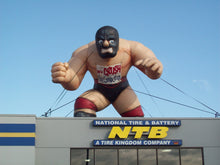 Load image into Gallery viewer, Masked Wrestler