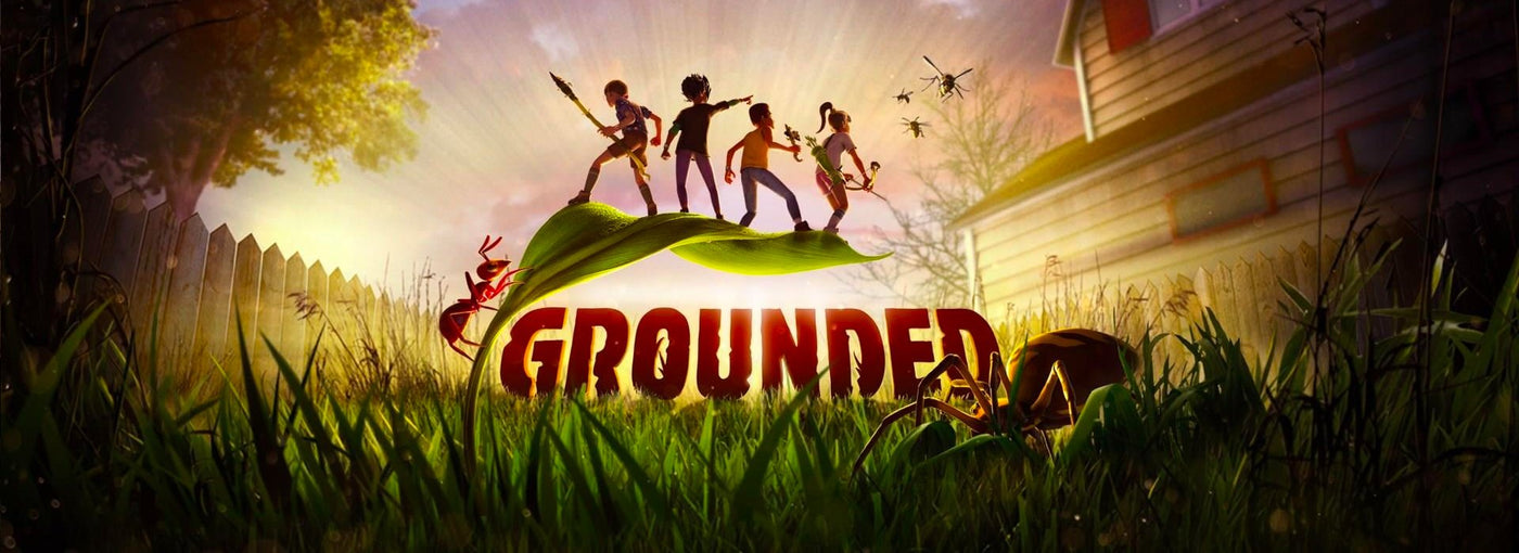 Grounded collection banner