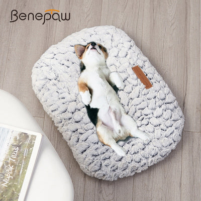 Warm Dog Bed Soft Comfortable Thick Plush Antislip Dog Mat.