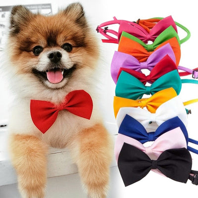Dog Bow Tie with Adjustable Strap