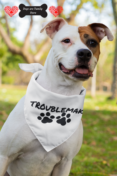 Troublemaker Pet Scarf.
