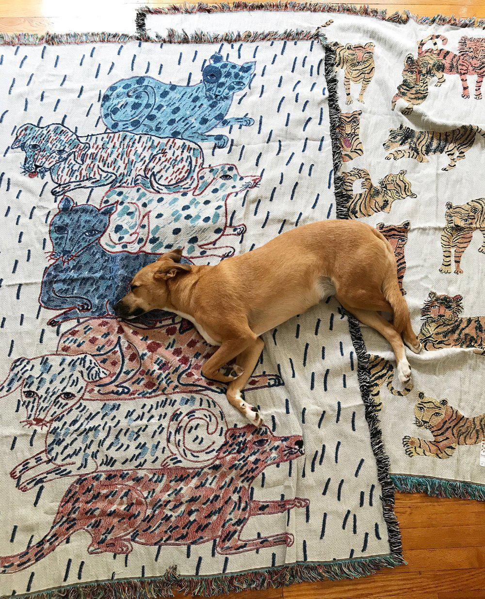 Sprinkled Dogs and Cats Totem Blanket-Olivia Wendel