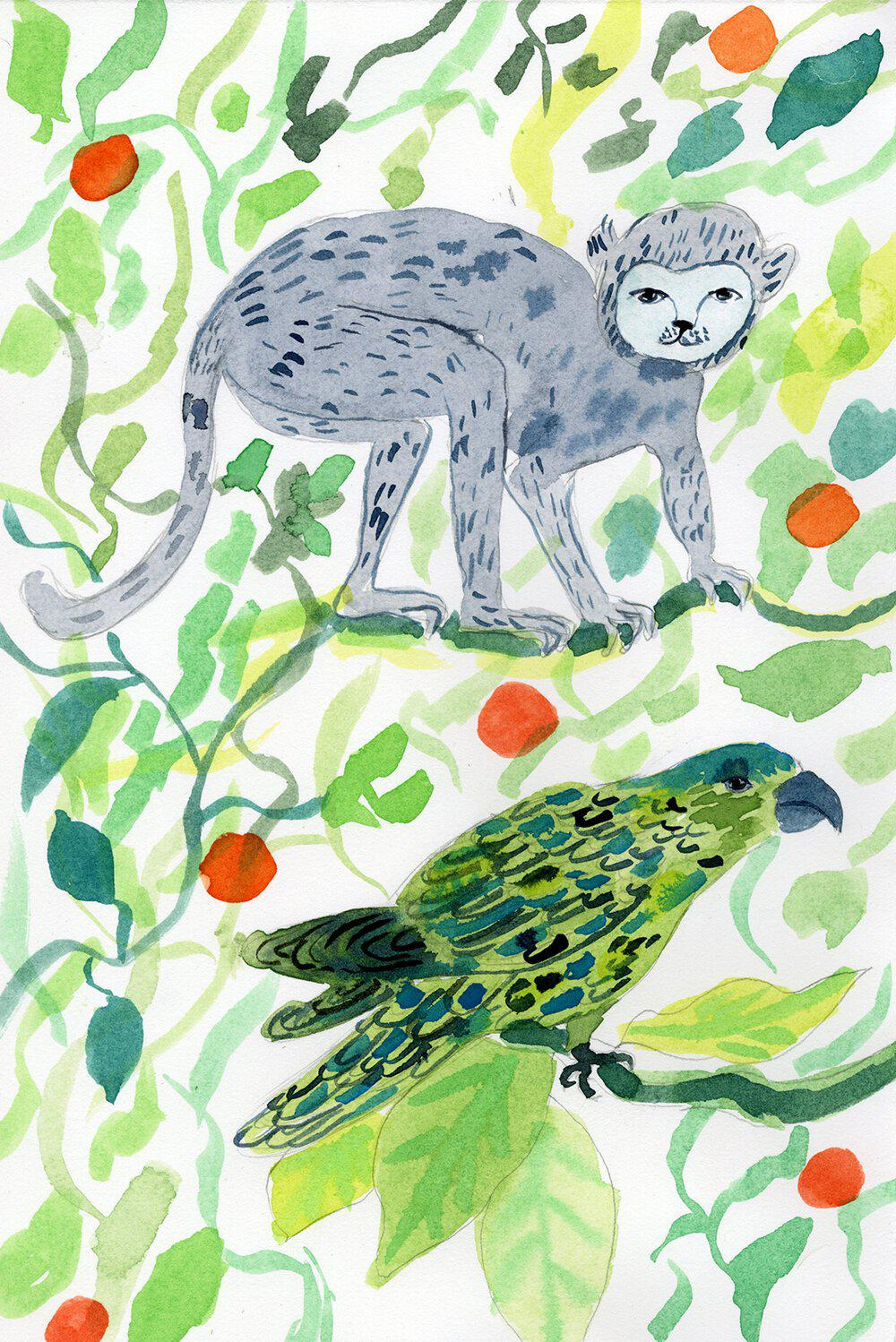 Parrot and Monkey Watercolor-Olivia Wendel