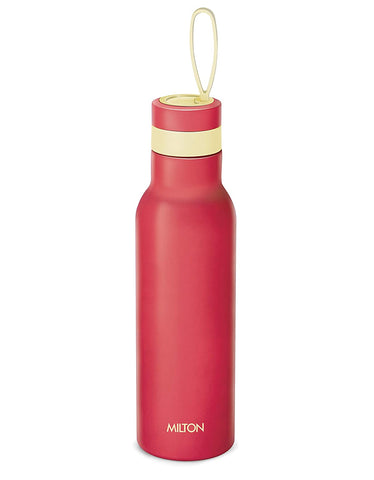 Milton Smarty 600 ml Thermosteel Stainless Steel Bottle / Flask - My Dream Kitchens