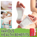 Premium Herbal Detox Foot Pads (Set of 10) getthismall