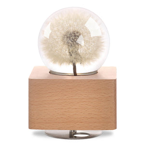 cute gifts for girlfriend Dandelion Crystal Ball Music Box with LED Mood Light