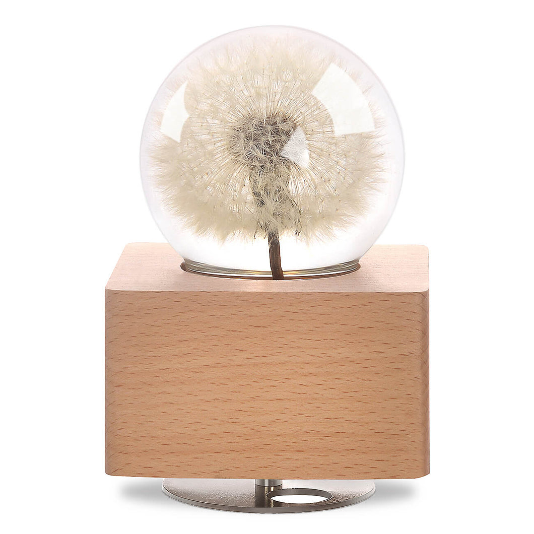 cute gifts for girlfriend Dandelion Crystal Ball Music Box with LED Mood Light lightue