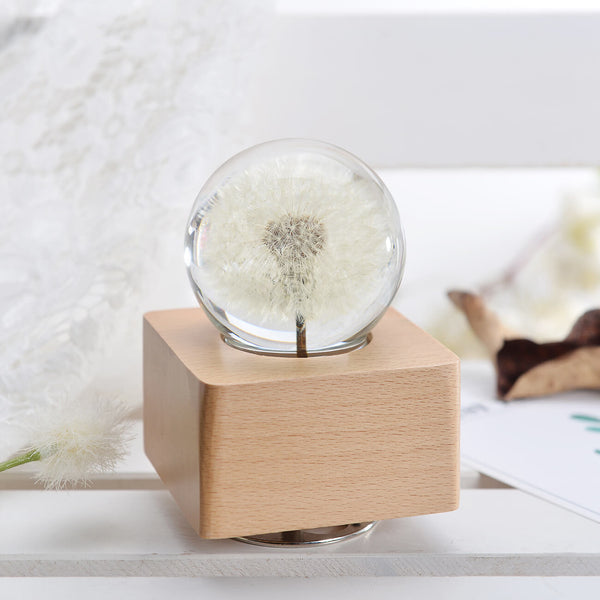 cute gifts for girlfriend Crystal Ball Wooden Music Box with LED Mood Light www.lightue.com