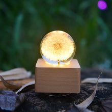 Load image into Gallery viewer, cute gifts for girlfriend Dandelion Crystal Ball Music Box with LED Mood Light lightue