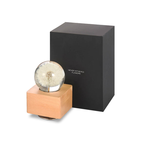 anniversary gifts for her Rangoon Creeper Crystal Ball Music Box with LED Mood Light