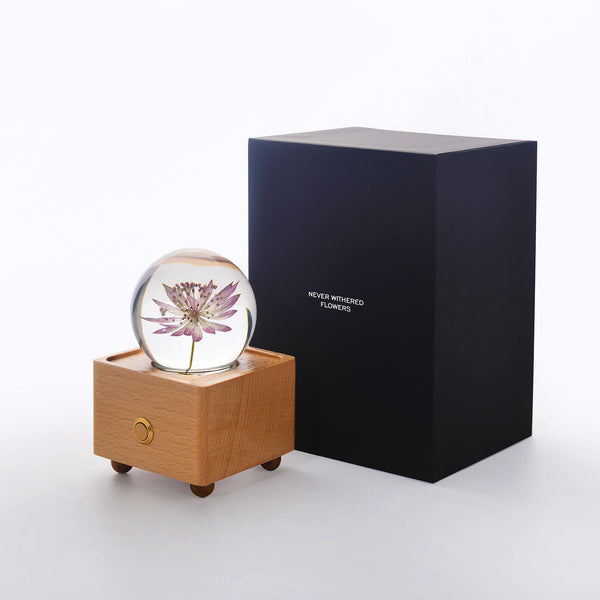Dandelion Crystal Ball Bluetooth Speaker with LED Mood Light unique anniversary gifts