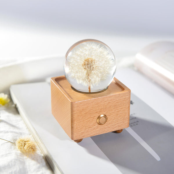 unique anniversary gifts Dandelion Crystal Ball Bluetooth Speaker with LED Mood Light