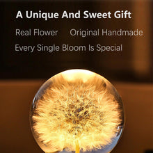 Load image into Gallery viewer, unique anniversary gifts Dandelion Crystal Ball Bluetooth Speaker with LED Mood Light lightue