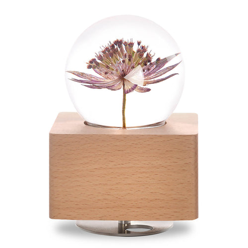 personalized gifts for mom Great Masterwort Crystal Ball Music Box with LED Mood Light lightue
