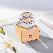 Load image into Gallery viewer, birthday gifts for mom Great Masterwort Crystal Ball Bluetooth Speaker with LED Mood Light lightue