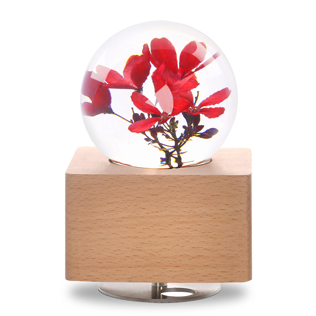 Peregrina Crystal Ball Music Box with LED Mood Light