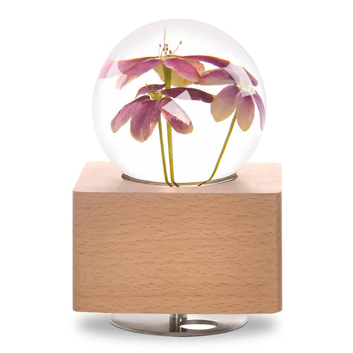 anniversary gifts for her Rangoon Creeper Crystal Ball Music Box with LED Mood Light lightue