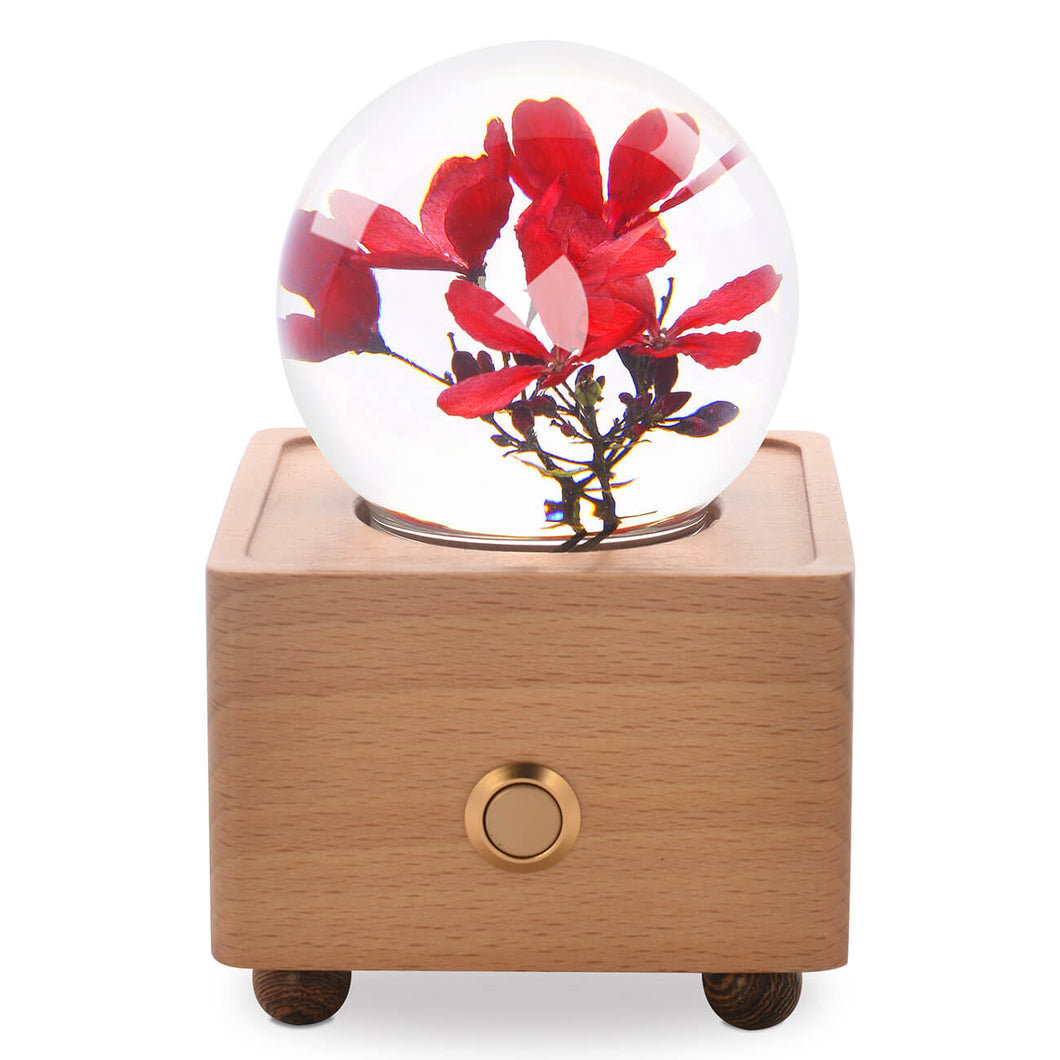 unique gifts for women Peregrina Crystal Ball Bluetooth Speaker with LED Mood Light lightue