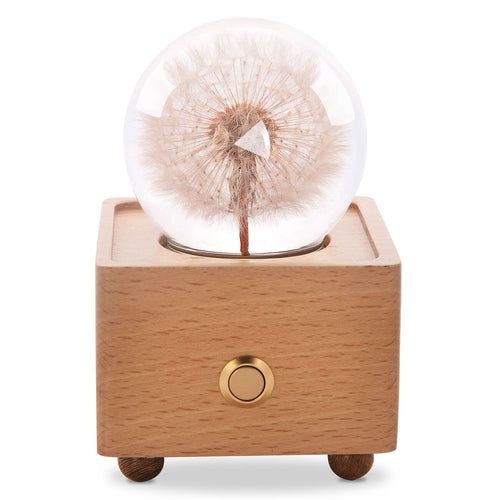 unique anniversary gifts Dandelion Crystal Ball Bluetooth Speaker with LED Mood Light lightue