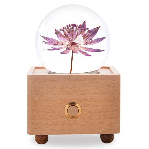 birthday gifts for mom Great Masterwort Crystal Ball Bluetooth Speaker with LED Mood Light