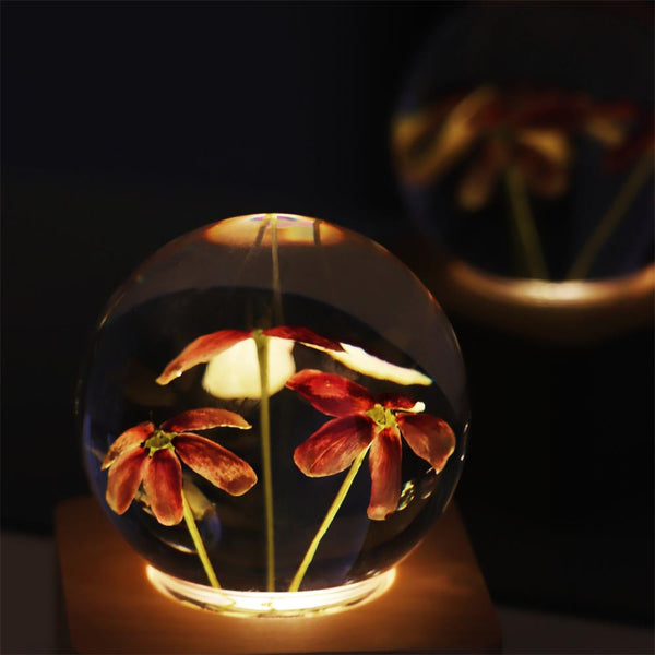 Rangoon Creeper Crystal Ball Music Box with LED Mood Light