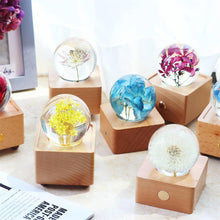 Load image into Gallery viewer, birthday gifts for her ideas Great Masterwort Crystal Ball LED Night Light lightue