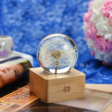 Load image into Gallery viewer, personalized gifts for her Dandelion Crystal Ball LED Night Light lightue