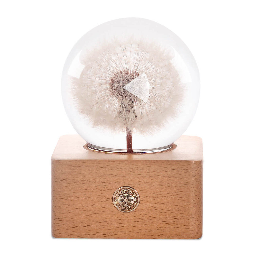 personalized gifts for her Dandelion Crystal Ball LED Night Light lightue
