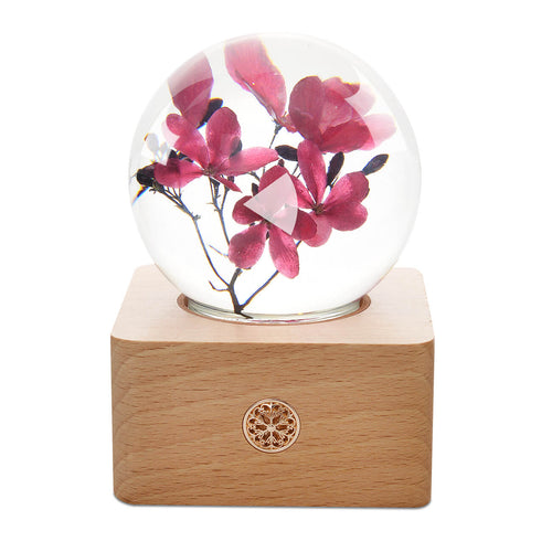 romantic gifts for her Peregrina Crystal Ball LED Night Light lightue