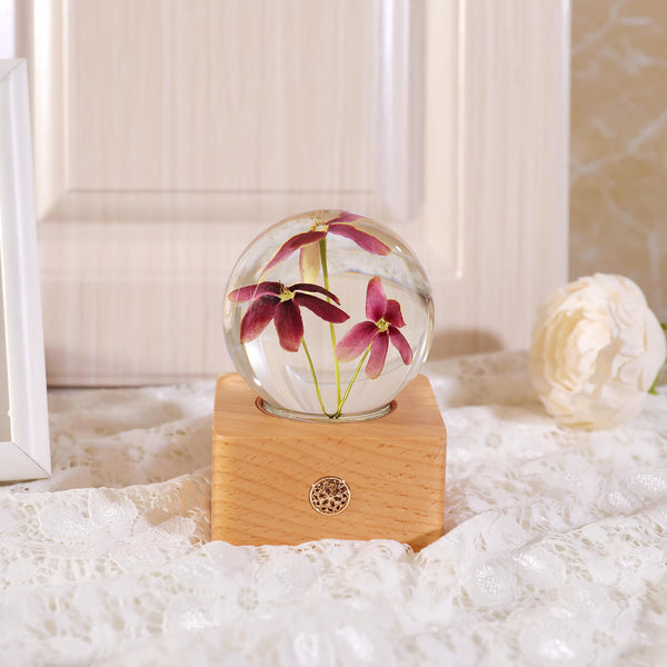 Night Light cute night light Rangoon Creeper Crystal Ball LED Night Light