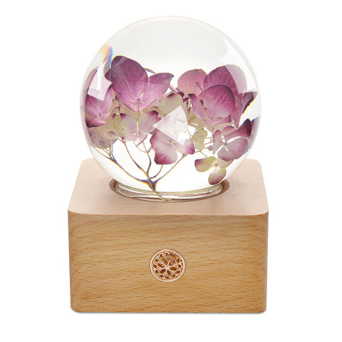 Night Light gift 9 years old girl Red Hydrangea Crystal Ball LED Night Light