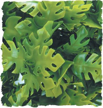 ASSORTED Zoo Med Natural Bush® Plants - Lg.