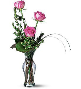 EFV120 Tender Trio - Euro Flowers Mississauga ON