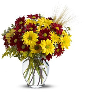 EF809 Fall for Daisies - Euro Flowers Mississauga ON