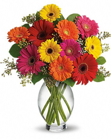 EFM100 Gerbera Brights Flower Arrangement - Euro Flowers Mississauga ON