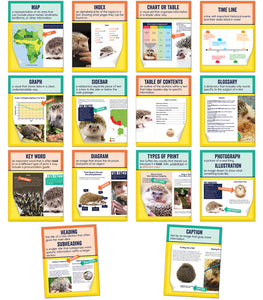 Mini Posters: Nonfiction Text Features
