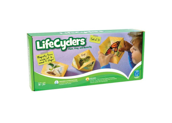 LifeCyclers™ Butterfly, Frog and Plant