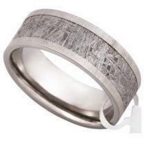Meteorite Ring Inlay without Inclusions