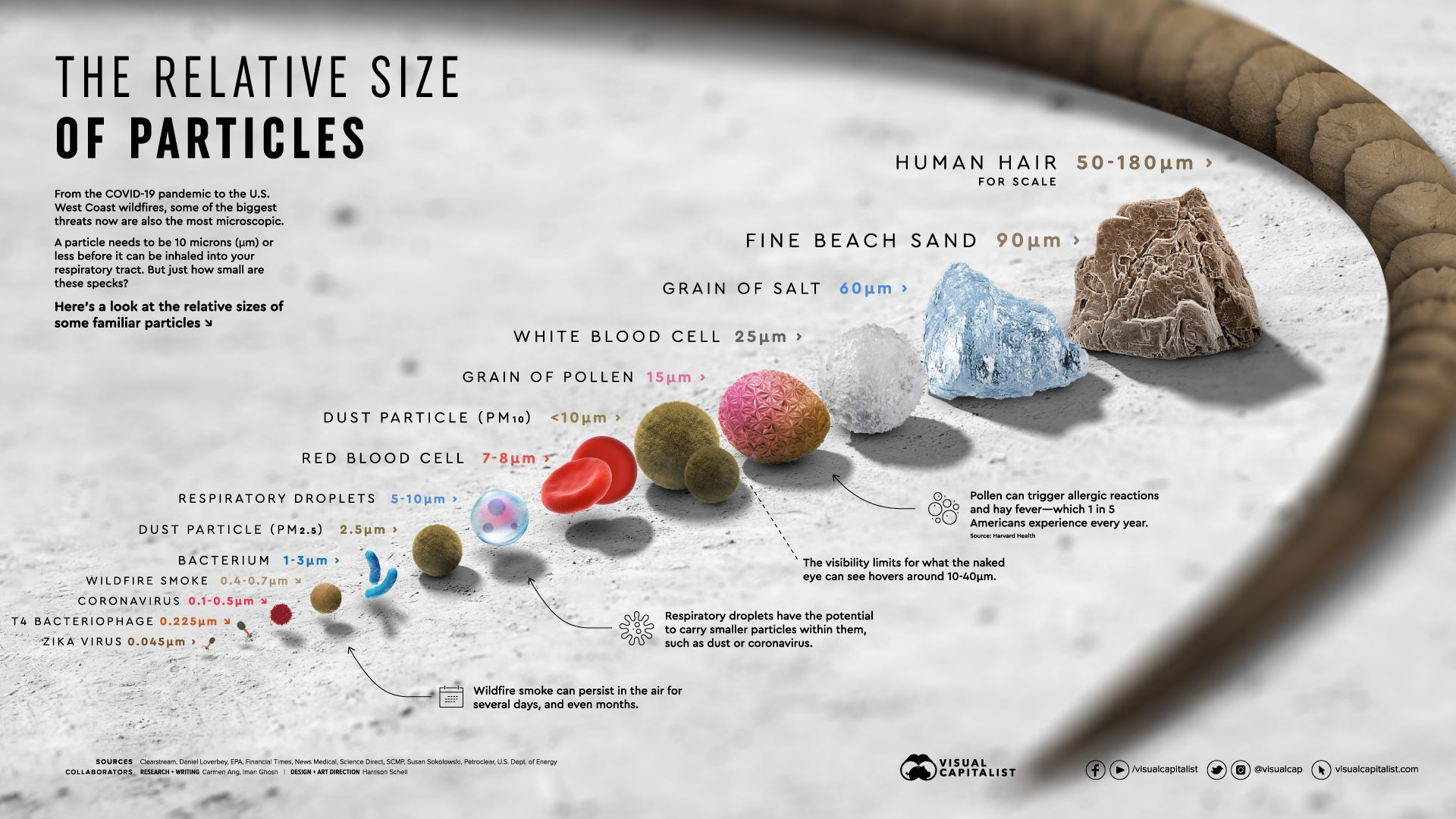 The size of some familiar particles in microns, from Visual Capitalist.