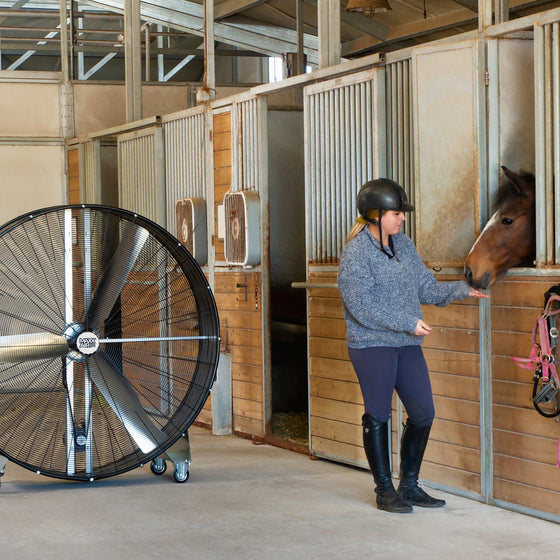 60 in. drum fan blows cool air in the direction of an equestrian and stalled horse in a barn.