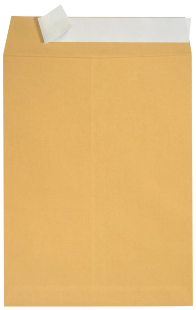 "Catalog Envelopes, 6"" x 9"", Kraft Paper, 100 Count Envelopes Blue Summit Supplies"