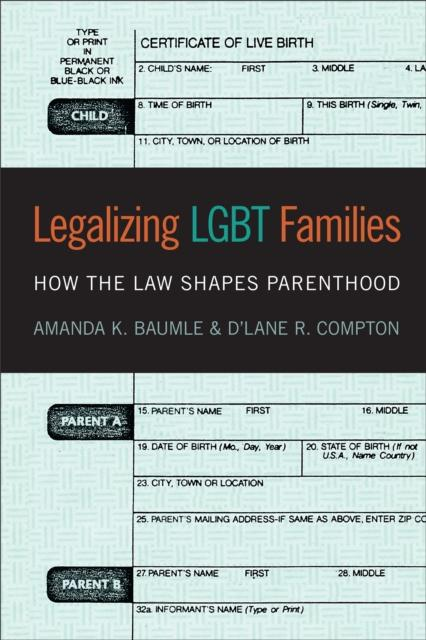 Legalizing LGBT Families : How the Law Shapes Parenthood by Amanda K. Baumle, D'Lane R. Compton